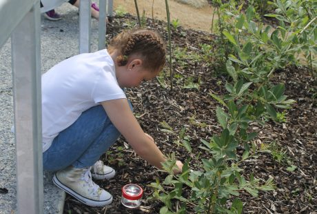 Gardening for Kids at the Rediscovery Centre