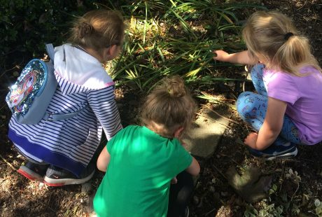 Biodiversity at the Rediscovery Centre